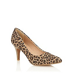 Lotus - Leopard microfibre 'Drama' court shoes