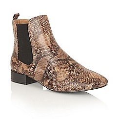 Dolcis - Brown Snake 'Jenna' ankle boots