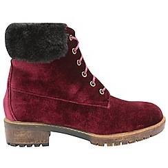 Dolcis - Wine 'Joan' ladies lace up velvet ankle boots