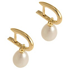 Pure Luxuries London - Gift packaged 'Toroa' river pearl and 9-carat yellow gold earrings