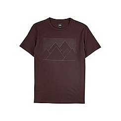 Burton - Berry mountain hi-build print t-shirt