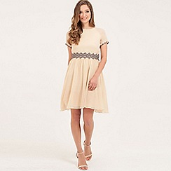 Little Mistress - Nude floral embriodered fit and flare dress