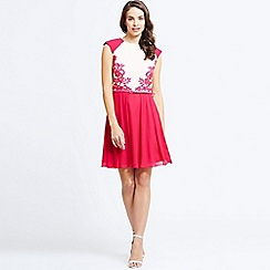 Little Mistress - Pink and cream lace panel contrast fit & flare dress