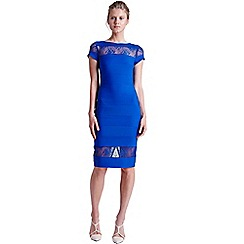 Paper Dolls - Blue lace panel wiggle dress