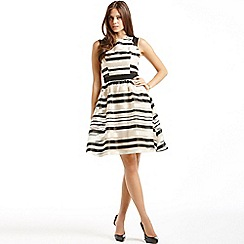 Little Mistress - Striped organza fit and flare dress