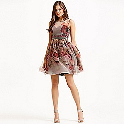 Little Mistress - Floral organza fit and flare dress