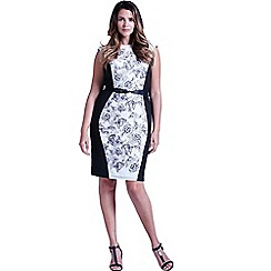 Little Mistress - Curvy grey and white illustrated floral panel dress
