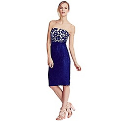 Little Mistress - Navy and cream lace bandeau dress