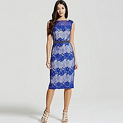 Little Mistress - Cobalt lace embellished bodycon midi dress