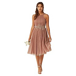 Little Mistress - Apricot applique mesh dress