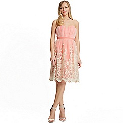 Laced In Love - Pink mesh overlay dress