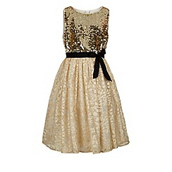 Monsoon - Gold New york dress