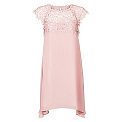 Monsoon - Pink Ella trapeze dress