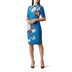 Hobbs - Blue floral print scuba 'Hazel' knee length pencil dress