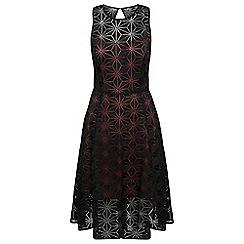 Celuu - Black 'Simone' lace skater dress