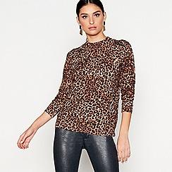 Star by Julien Macdonald - Tan leopard print zip top