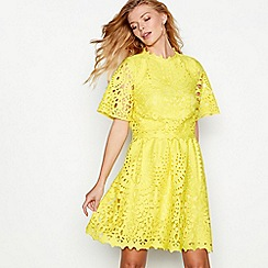 Debut - Yellow lace 'Mina' short sleeve shift dress