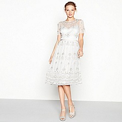 No. 1 Jenny Packham - Silver embroidered round neck short sleeve midi evening dress