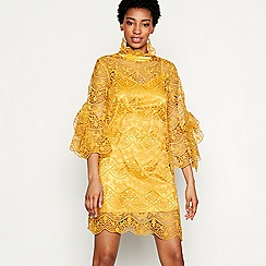 YAS - Yellow embroidered lace 'Diadora' high neck long sleeve mini dress