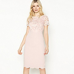 No. 1 Jenny Packham - Pale Pink Floral Lace Knee Length Dress