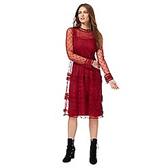 Nine by Savannah Miller - Dark red embroidered star dress