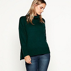 Nine by Savannah Miller - Green roll neck jumper with wool