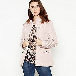 Principles Petite - Pale Pink Quilted Padded Petite Jacket