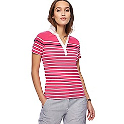 Maine New England - Pink striped collared top