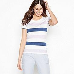 Maine New England - Purple Block Stripe Cotton Top