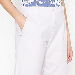 Maine New England - Purple Striped Chino Shorts