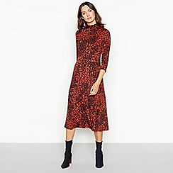 The Collection - Orange leopard print knee length fit and flare dress