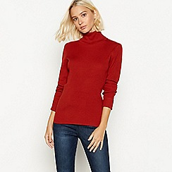The Collection - Red ribbed knit roll neck jumper