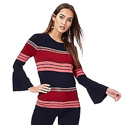 Principles Petite by Ben de Lisi - Navy and pink striped bell sleeves jumper