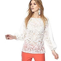 Principles - Ivory lace top
