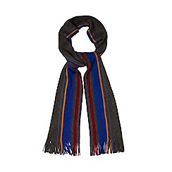 The Collection - Multi-coloured striped scarf