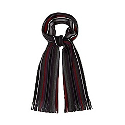 The Collection - Multi-coloured variegated striped scarf
