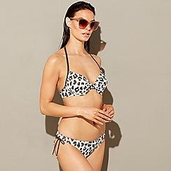 Beach Collection - Multi-coloured animal print halterneck bikini top