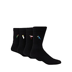 Red Herring - Pack of 4 black exotic bird embroidered ankle socks