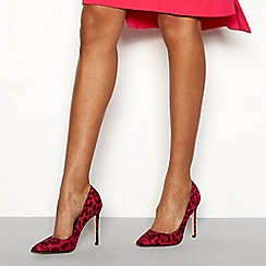 Faith - Pink 'Chloe' leopard pointed toe heels shoes