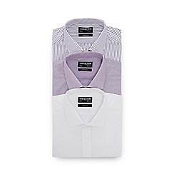 The Collection - 3 Pack Assorted Shirts