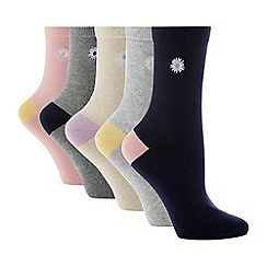 The Collection - Pack of 5 Embroidered Daisy Ankle Socks