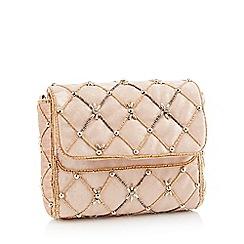 No. 1 Jenny Packham - Light pink embellished velvet clutch bag