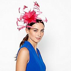 Star by Julien Macdonald - Pink Cut Feather Spray Fascinator