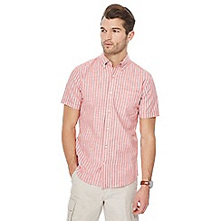 Maine New England - Big and tall pink striped tailored fit shirt