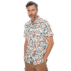 Mantaray - Big and tall multi-coloured palm leaf print shirt