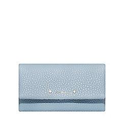 Fiorelli - Light blue 'Elise' dropdown purse