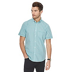 The Collection - Light green checked shirt