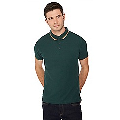 Red Herring - Dark green tipped collar polo shirt