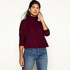 Red Herring - Plum ribbed high neck long sleeve top