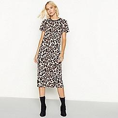Red Herring - Leopard print short sleeve midi dress